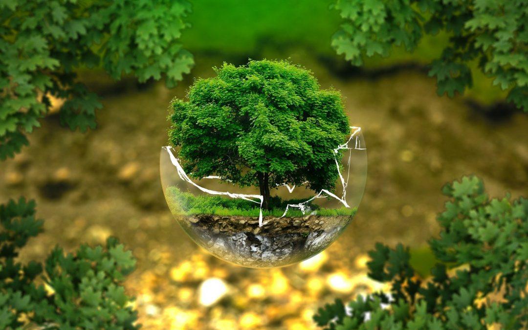 Környezetvédelmi kutatás